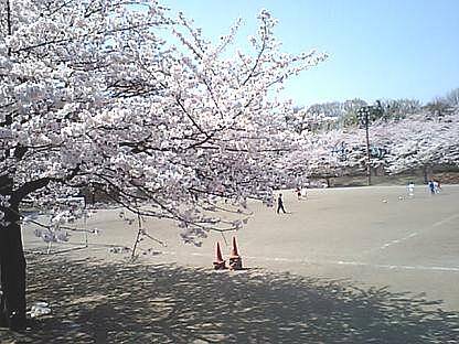 simomizokoyamap1.jpg